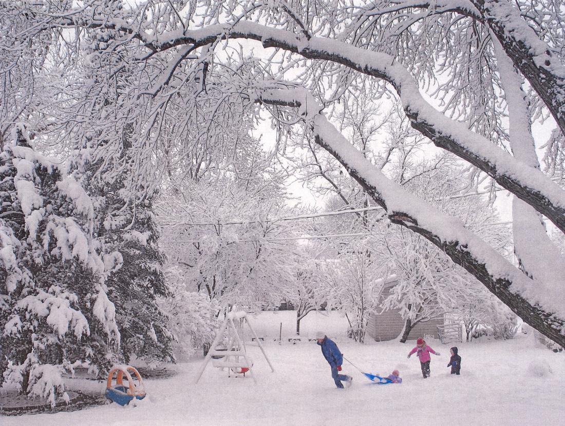 Live Snow Falling Wallpaper