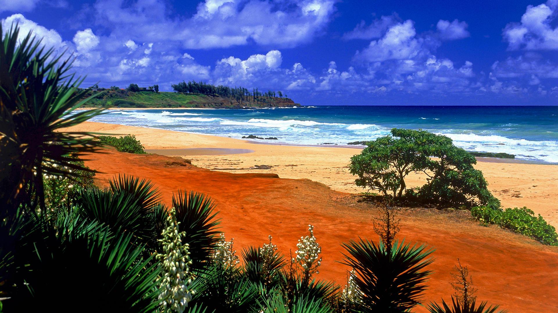 backgrounds beach desktop hawaii kealia kauai