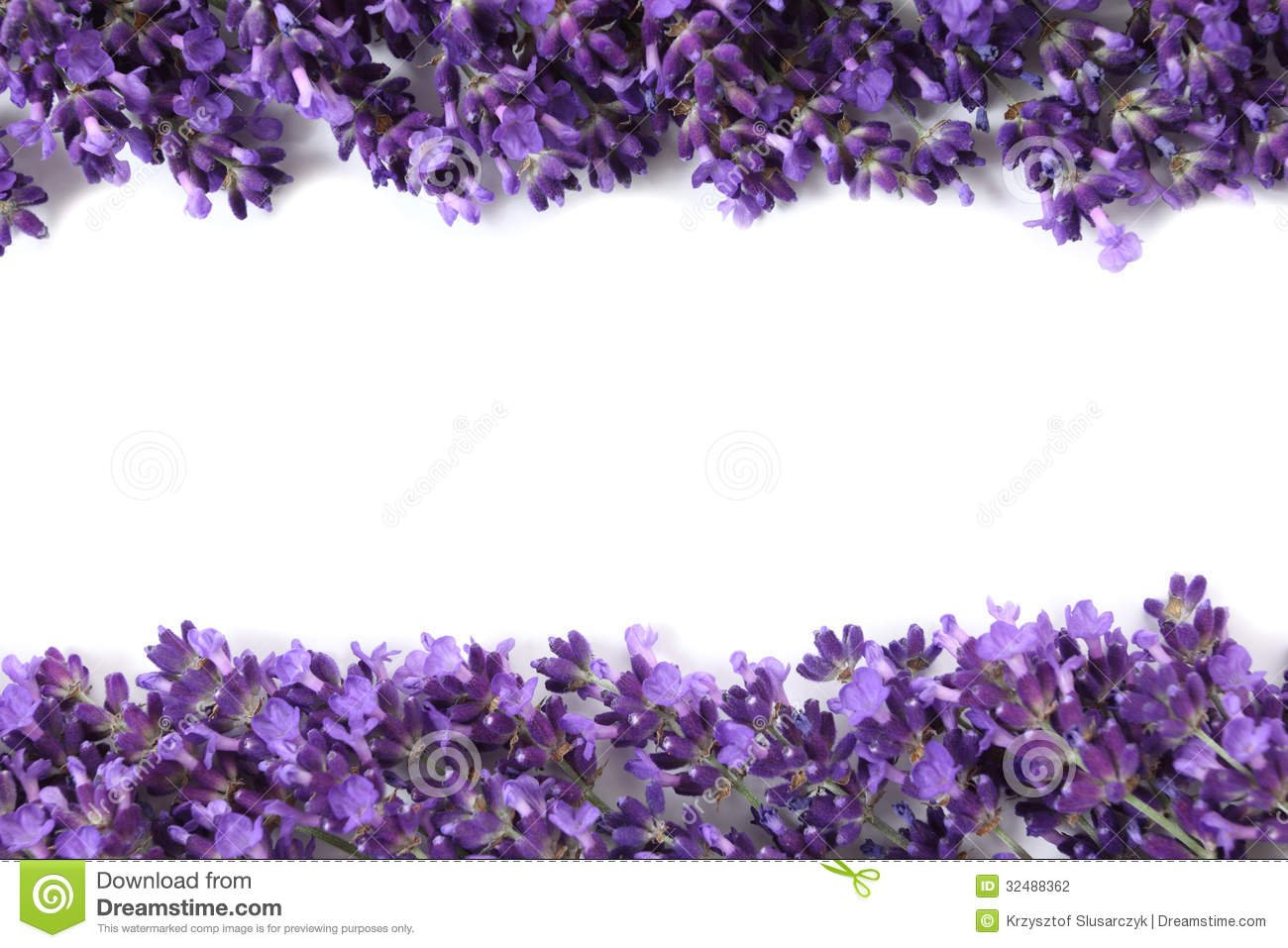 Purple Flower White Background - WallpaperSafari