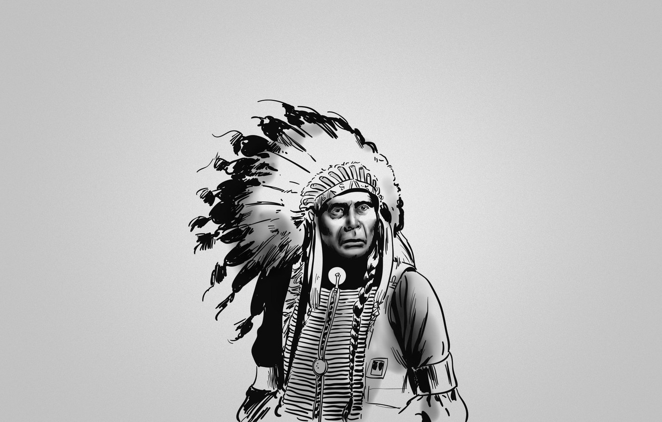 Wallpaper black and white feathers serious Indian red the 1332x850
