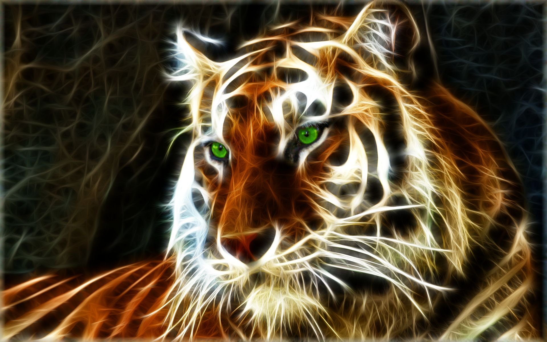 desktop hd pictures of animated tigers desktop hd pictures of 1920x1200