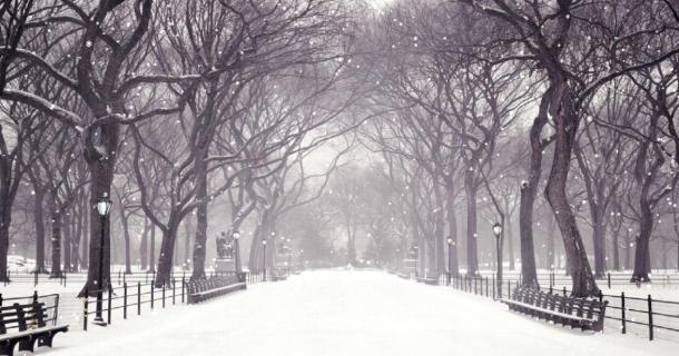 Download Winter Snow Screensaver Screensavergiftcom 610x320
