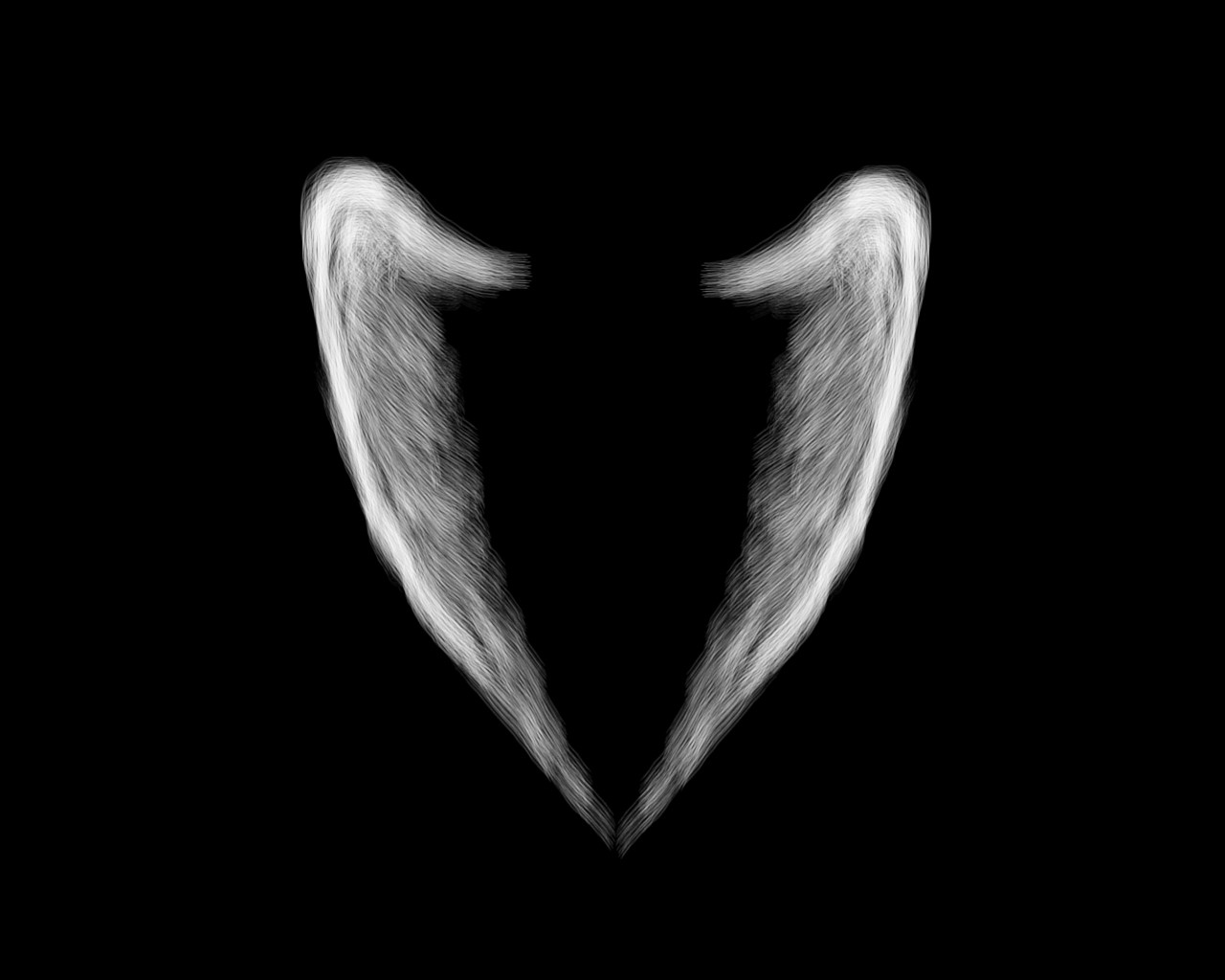 download Angel Wing Wallpaper Top HD Angel Wing Images LE HQ 1280x1024