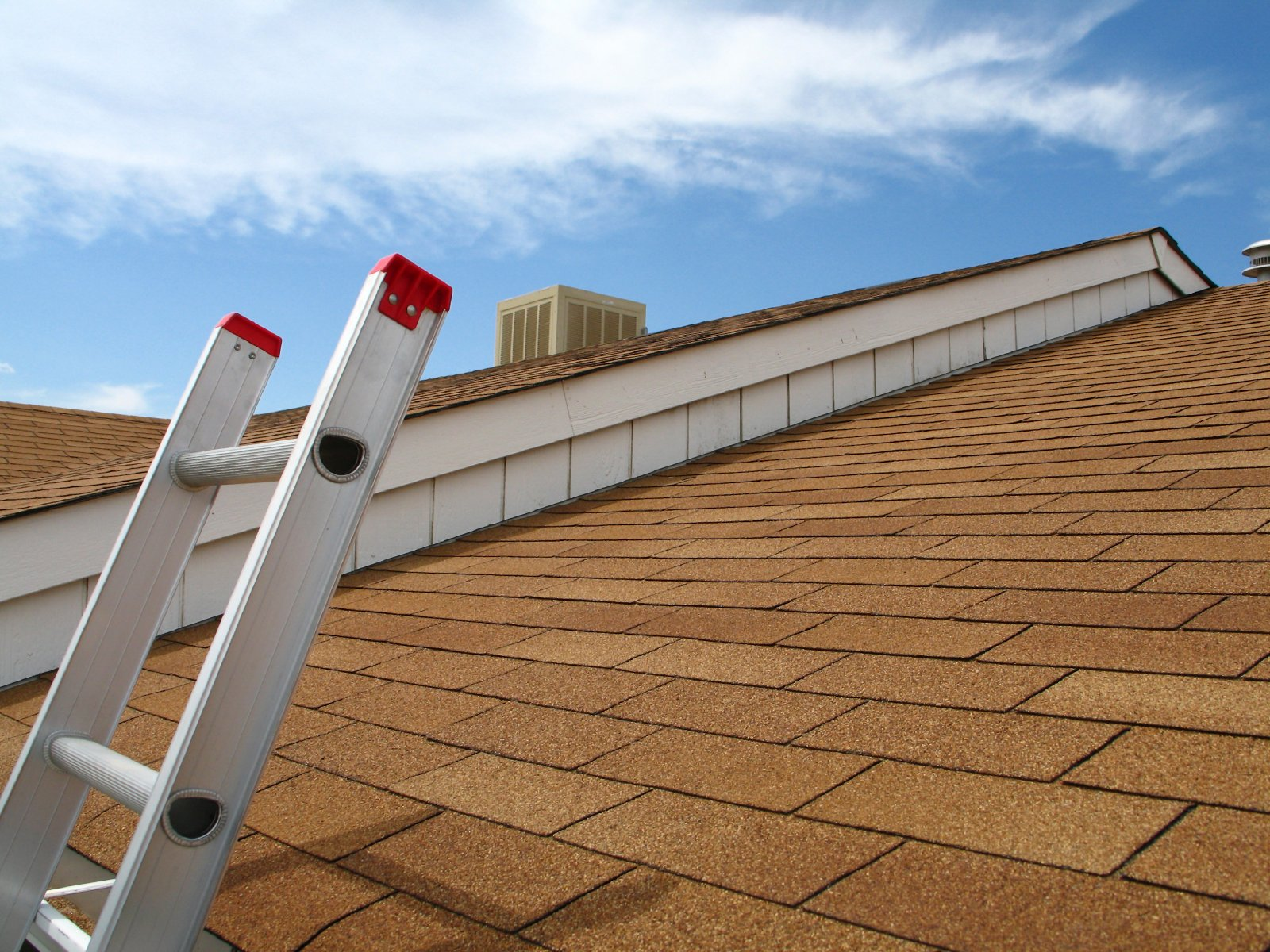 How to Maintain a Healthy Roof Tips and Tricks Themocracy 1600x1200