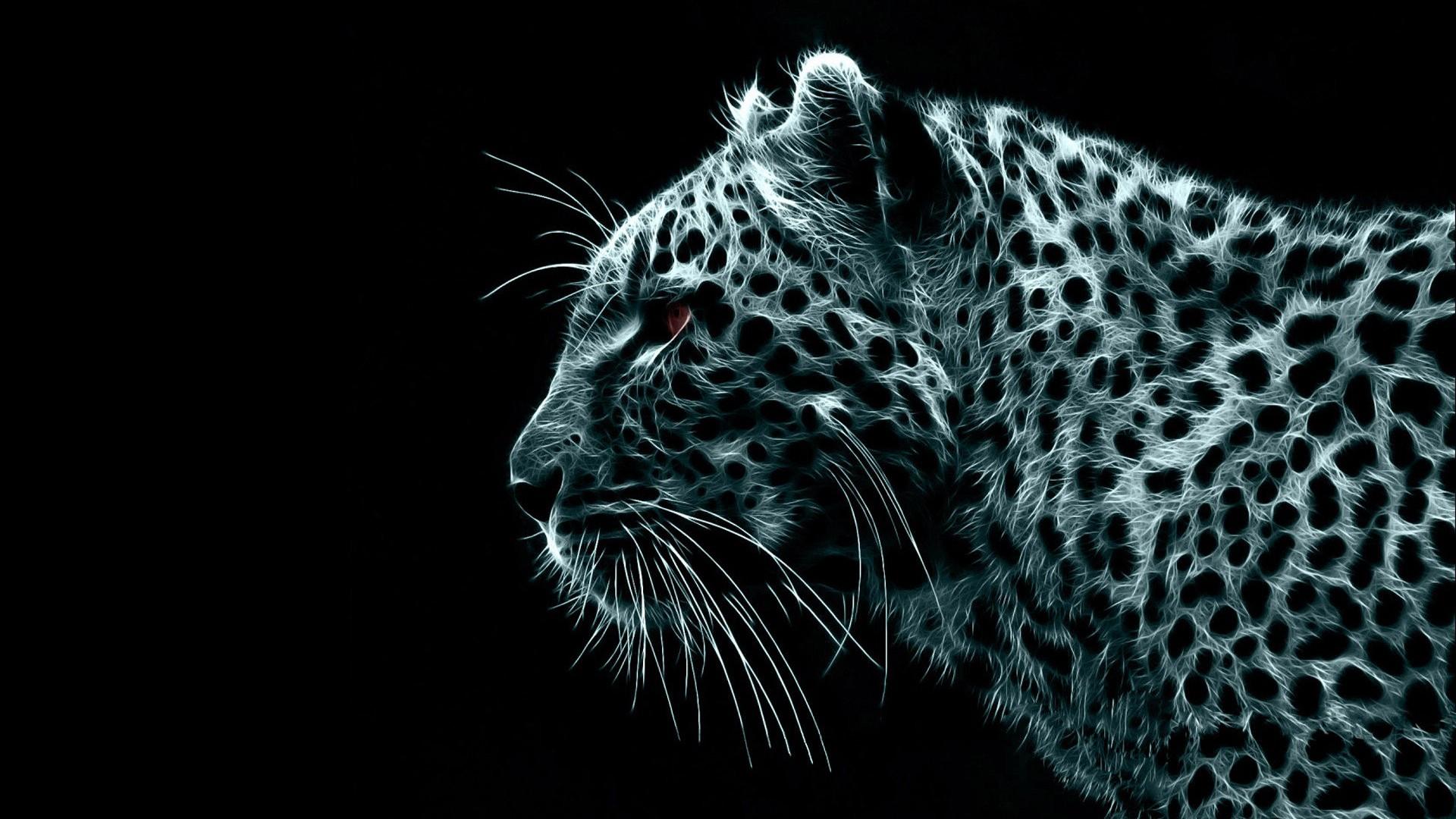 Wallpaper Leopard Desktop in high resolution for Get Wallpaper 1920x1080