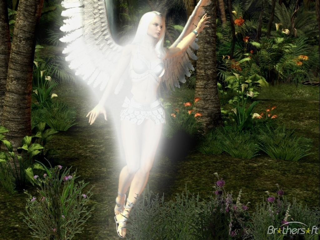Angels images Angel Of The Forest wallpaper photos 7450397 1024x768