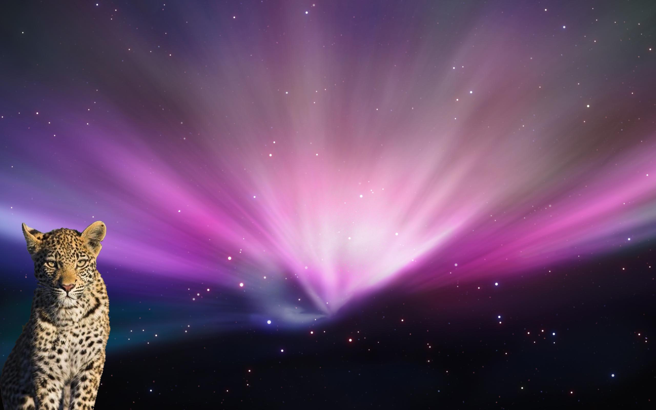 Login Screen Backgrounds Customize your Mac OS X login screen using 2560x1600