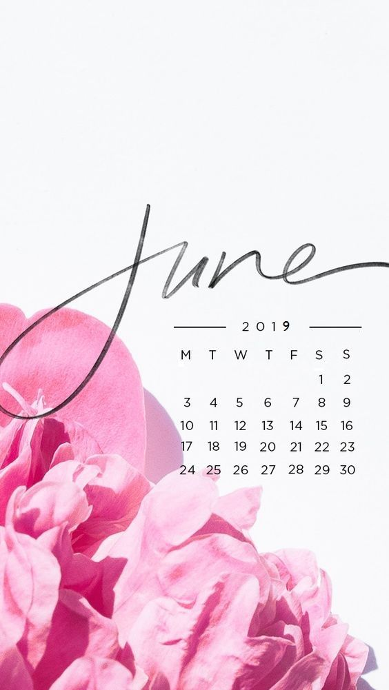 June 2019 iPhone Background Calendar Calender in 2019 564x1001