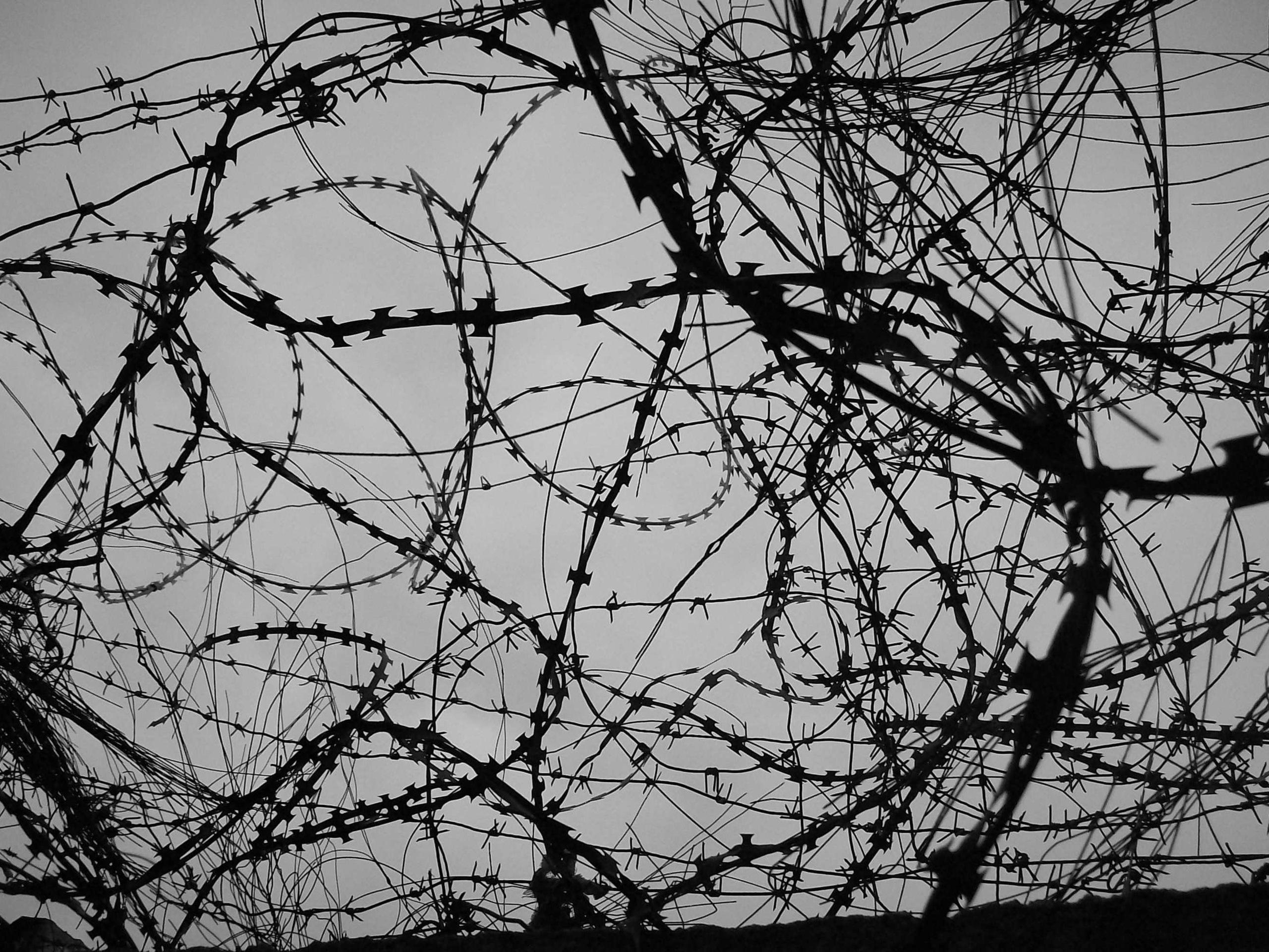 Barb Wire Wallpaper - WallpaperSafari