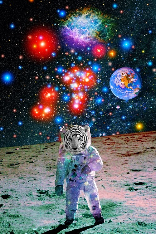 51 Psychedelic Astronaut Wallpapers On Wallpapersafari