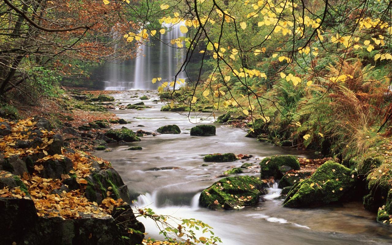 Free download Waterfall Live Wallpaper screenshot [1280x800
