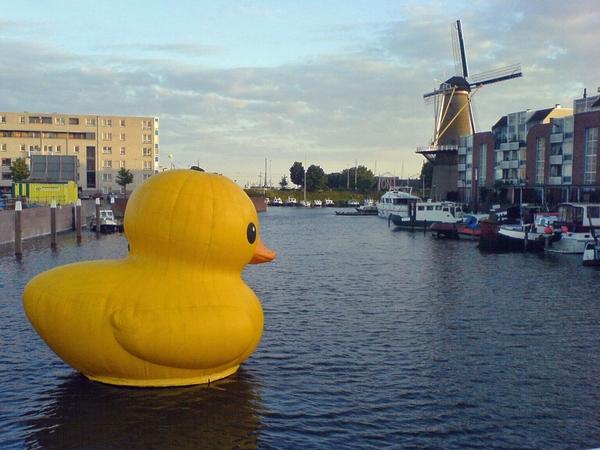 giant inflatable artwork port rubber ducks 1024x768 wallpaper 600x450
