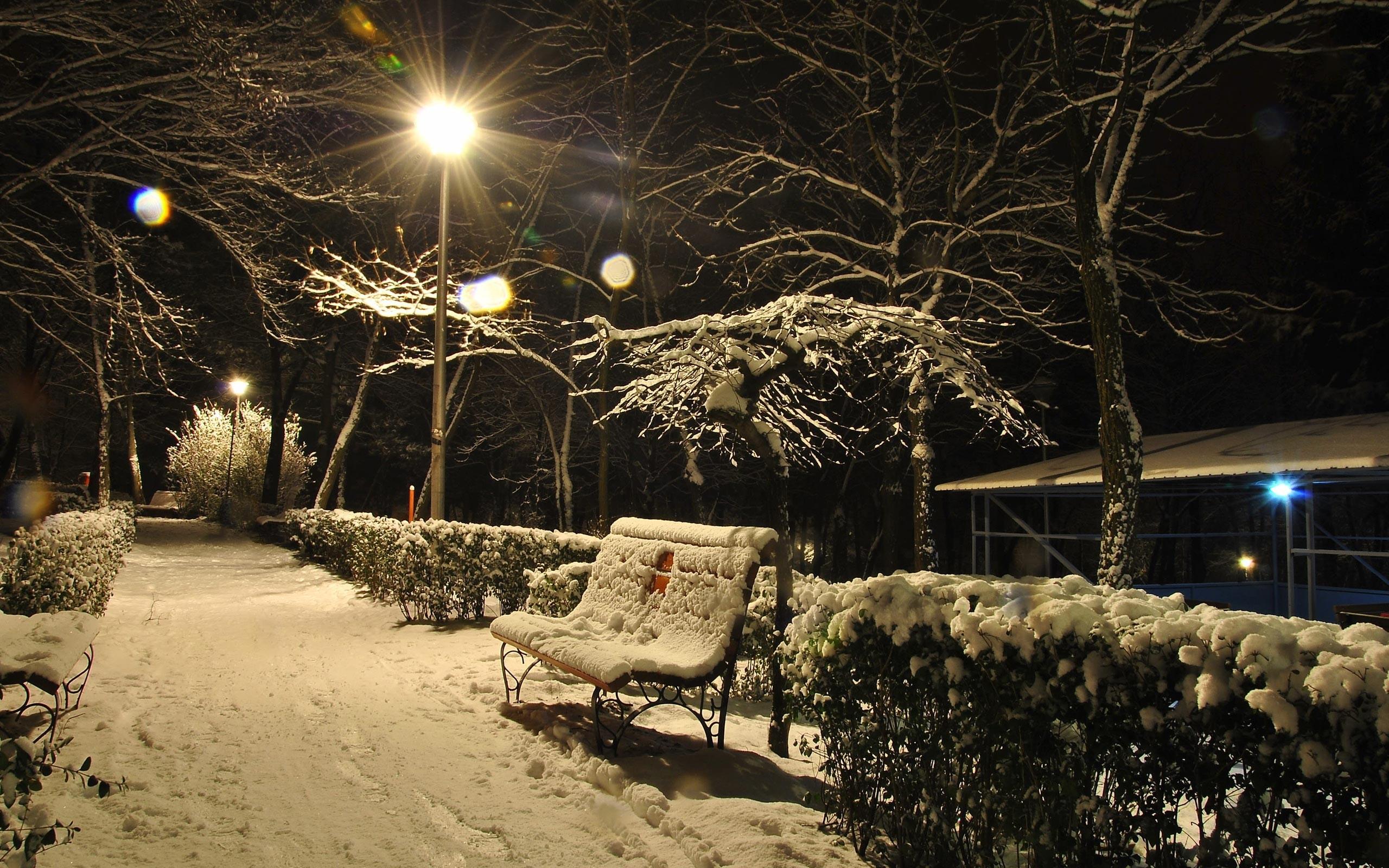 nature winter night wallpapers hd walljpegcom 2560x1600