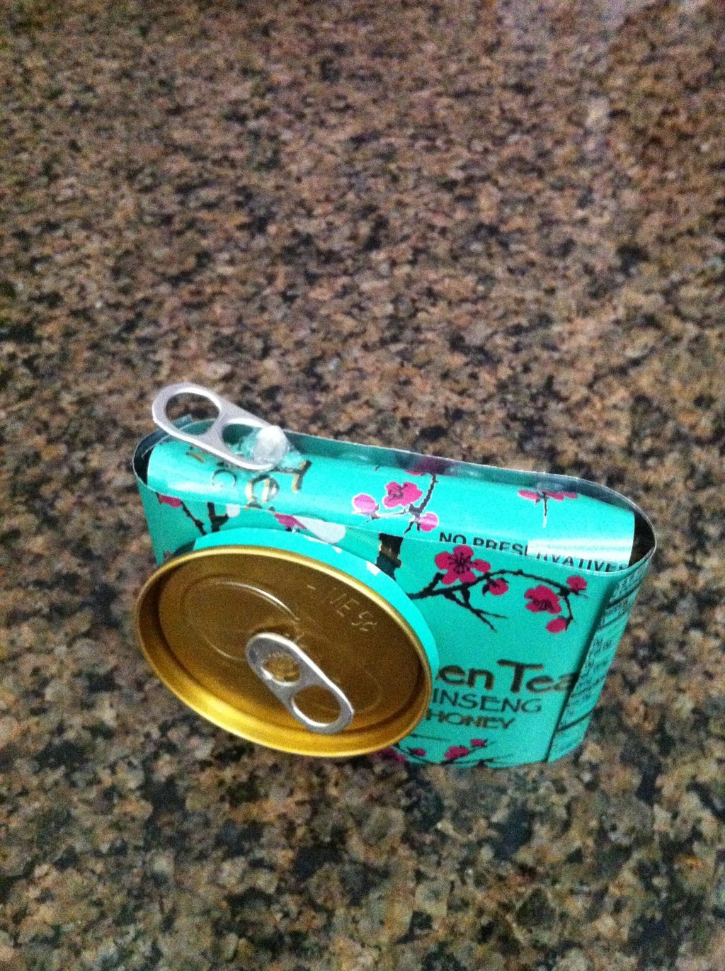 Arizona Tea Camera Raye The 1024x1371