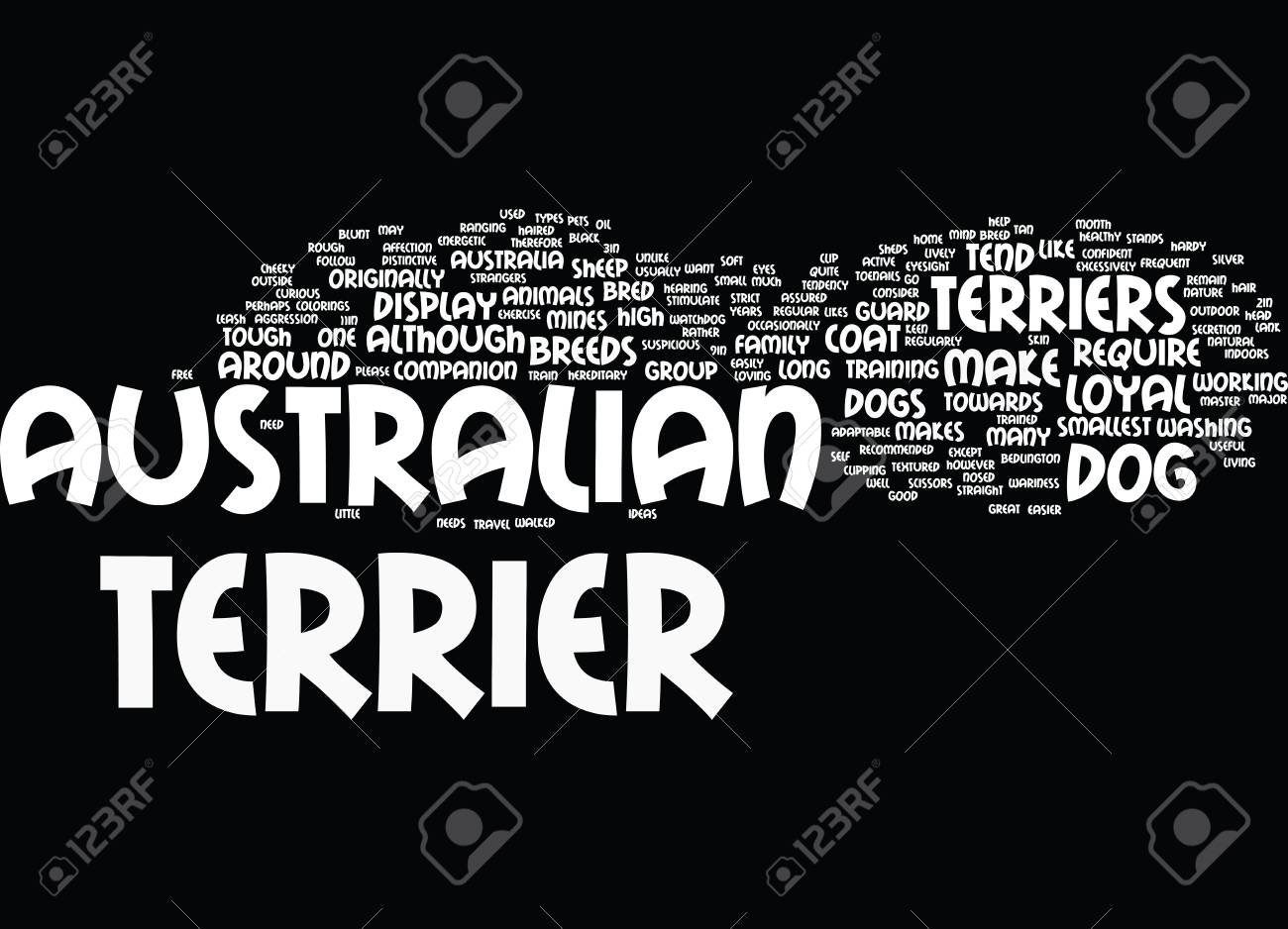 AUSTRALIAN TERRIERS MAKE LOYAL PETS Text Background Word Cloud 1300x938