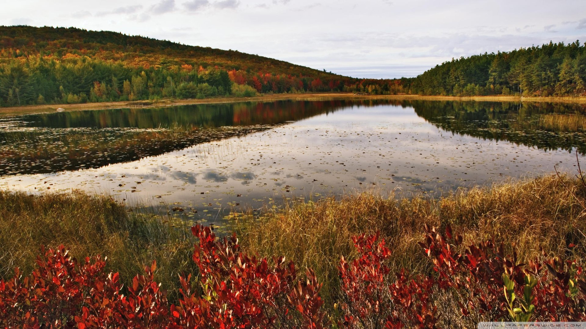 Acadia National Park Maine Wallpaper 1920x1080 Breakneck Pond Acadia 1920x1080