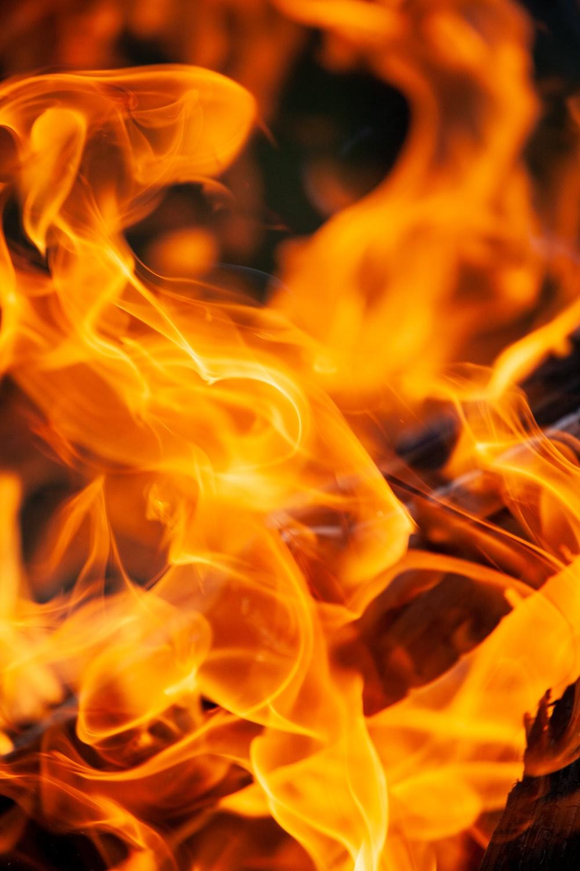 Fire Wallpapers HD Download [500 HQ] Unsplash 1000x1500