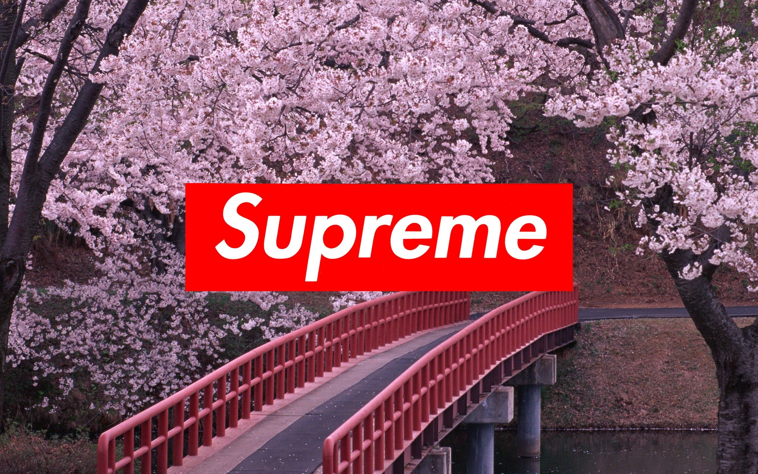 Supreme Laptop Wallpapers   Top Supreme Laptop Backgrounds 2560x1600