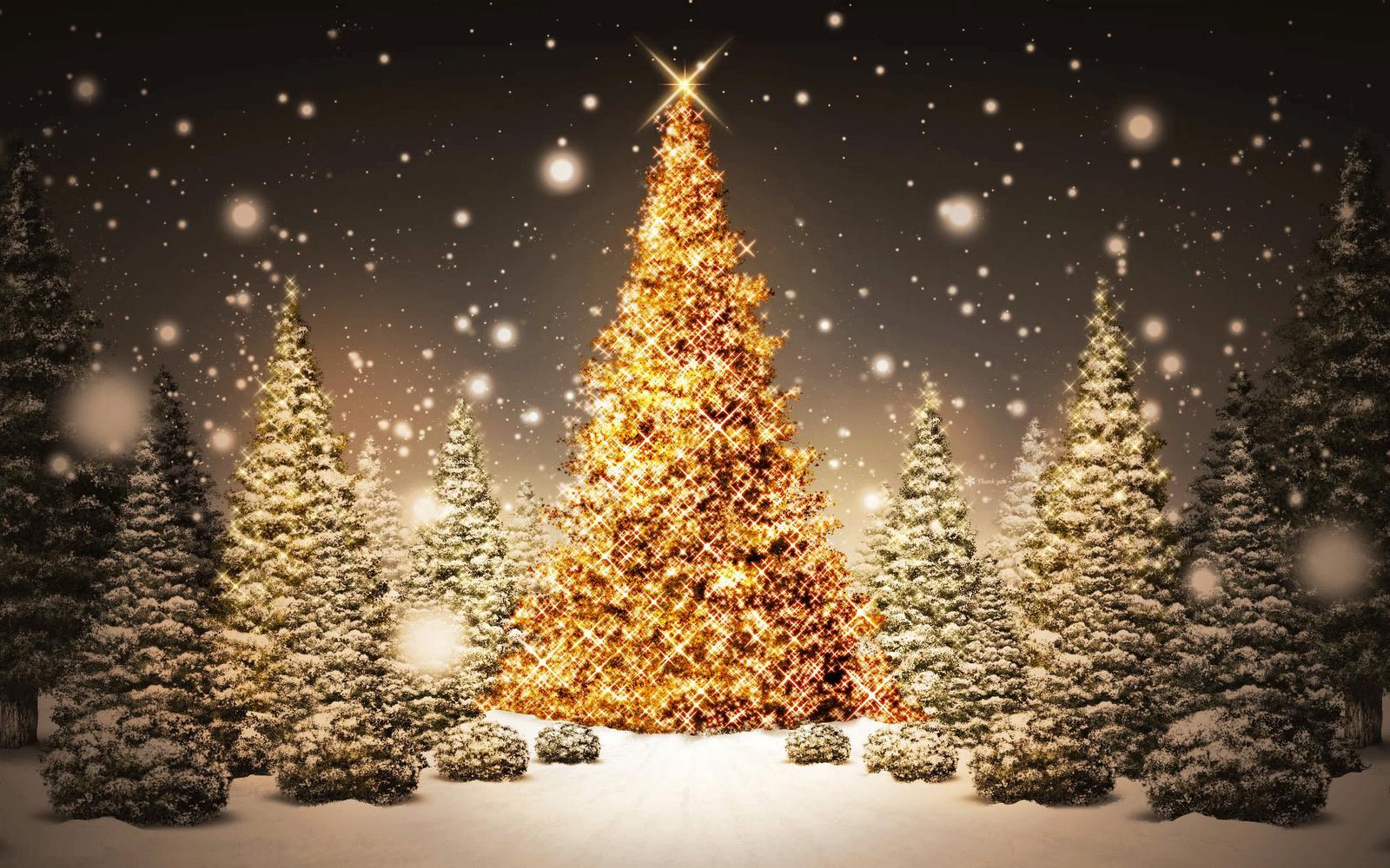 Best Desktop HD Wallpaper   Christmas lights wallpapers 1600x1000