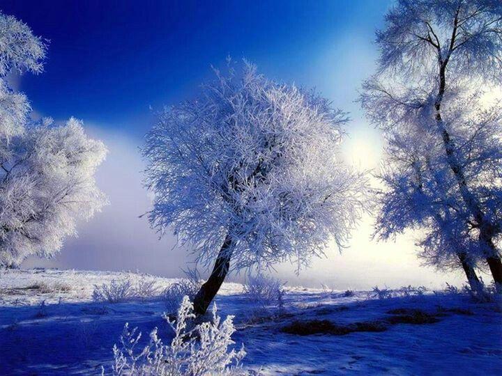 Winter Scene WINTER PARADISE Pinterest 720x540