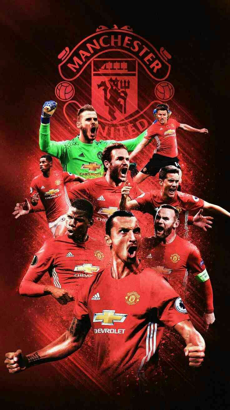 Best 20 Manchester united ideas 736x1308