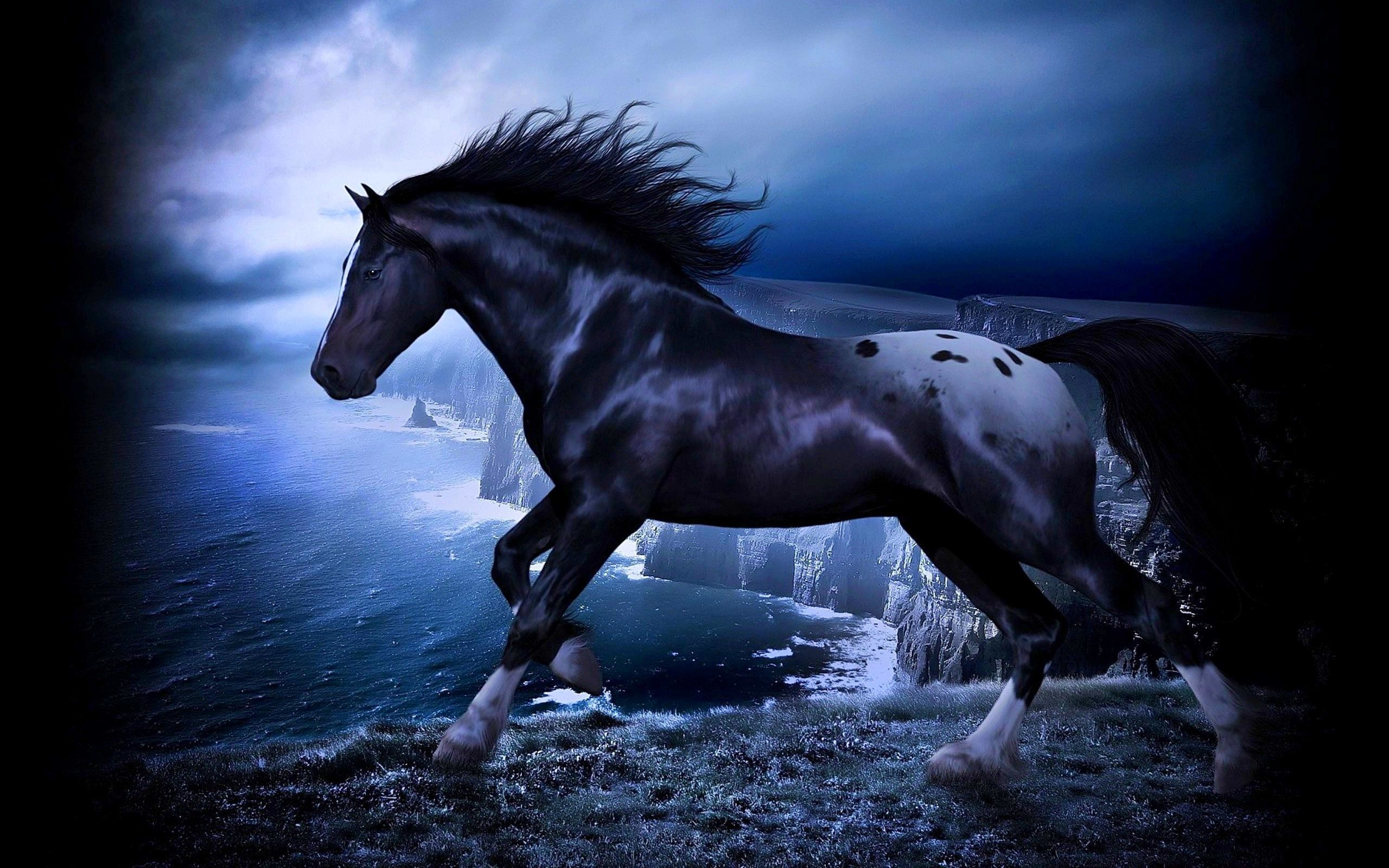Free Download Black Horse Image Wallpapers Collection 2560x1600 For Your Desktop Mobile Tablet Explore 37 Blackhorse Wallpaper Blackhorse Wallpaper