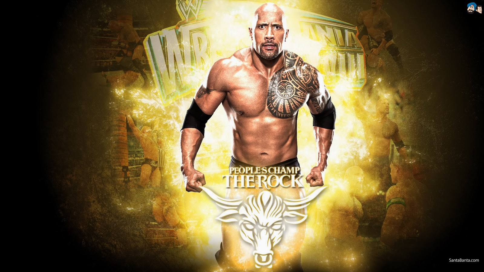 wwe the rock hd wallpaper description wwe the rock hd wallpaper 1600x900