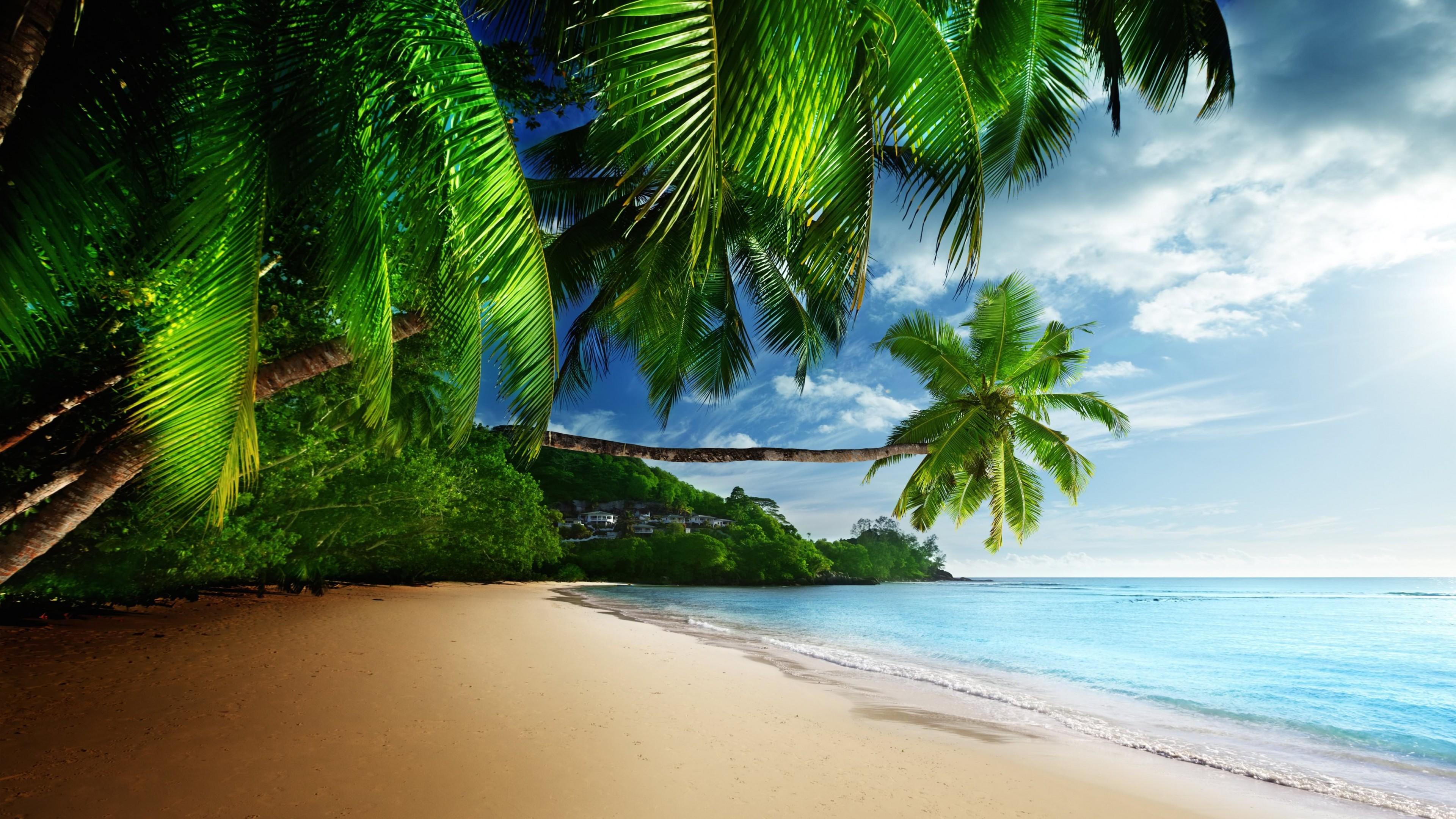 Paradise Beach HD wallpaper for 4K 3840 x 2160   HDwallpapersnet 3840x2160
