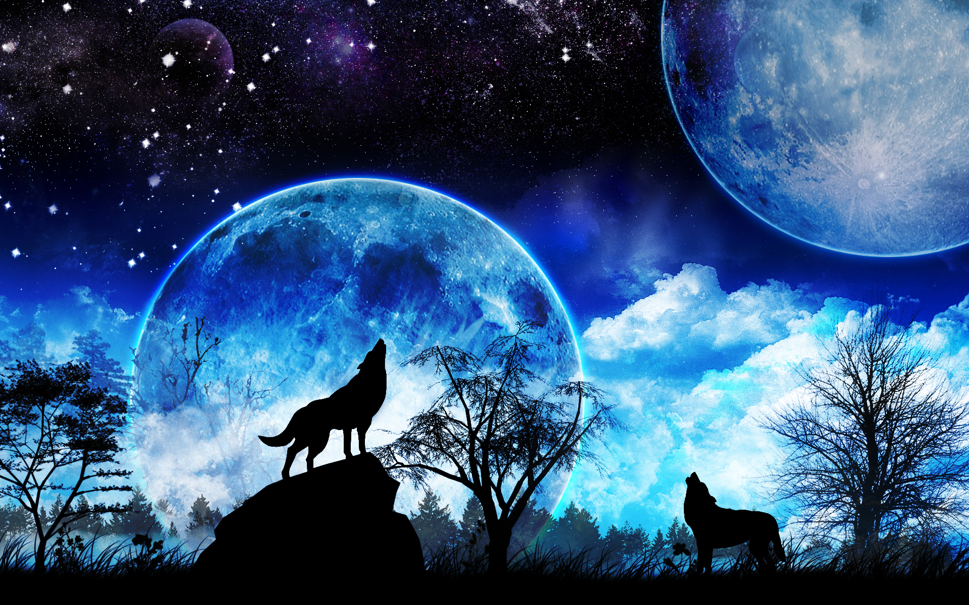 blue moon wolf wallpaper - photo #15