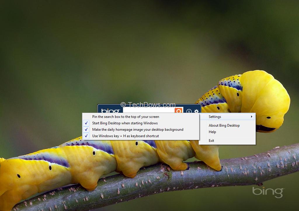 Bing Desktop makes Bings daily homepage image as desktop background 1024x723