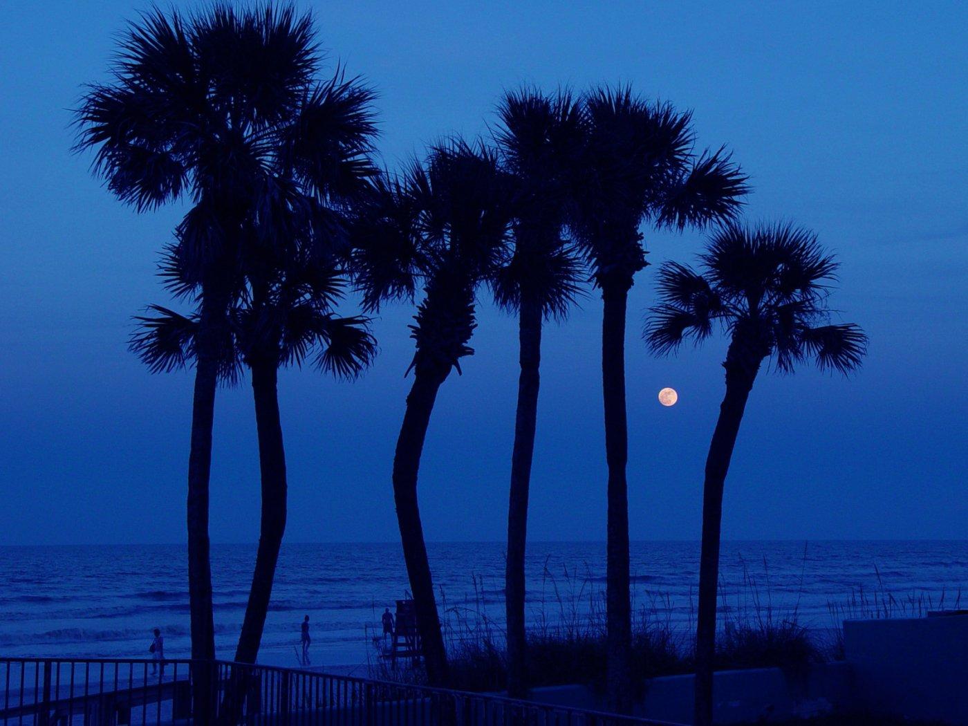 Daytona Beach Florida Night 1400x1050 Wallpapers 1400x1050 Wallpapers 1400x1050