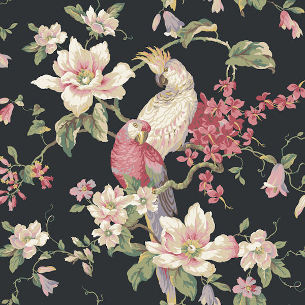 Black Tropical Birds With Magnolias Wallpaper   Wall Sticker Outlet 600x600