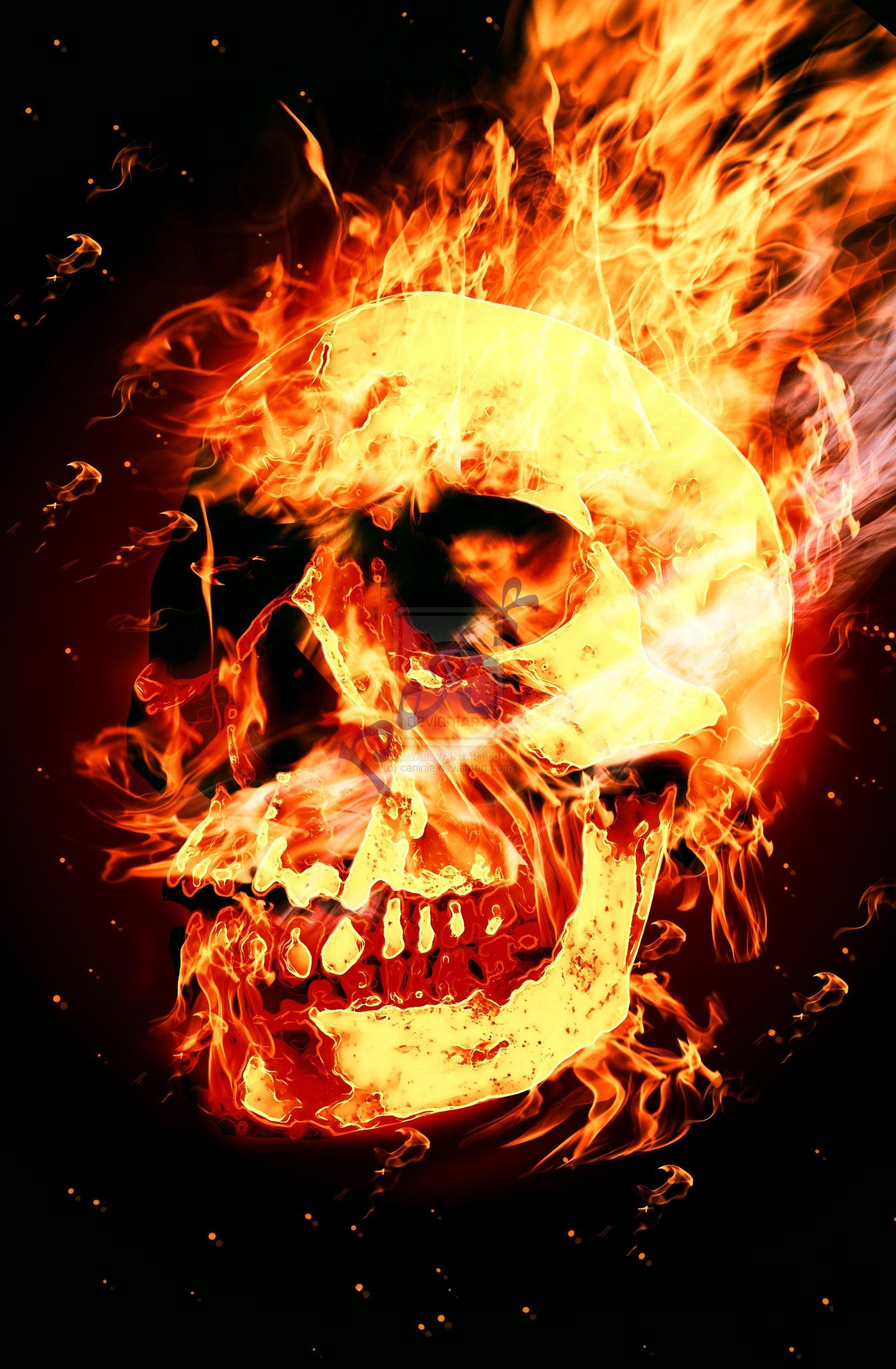 горящий череп картинку скачать
