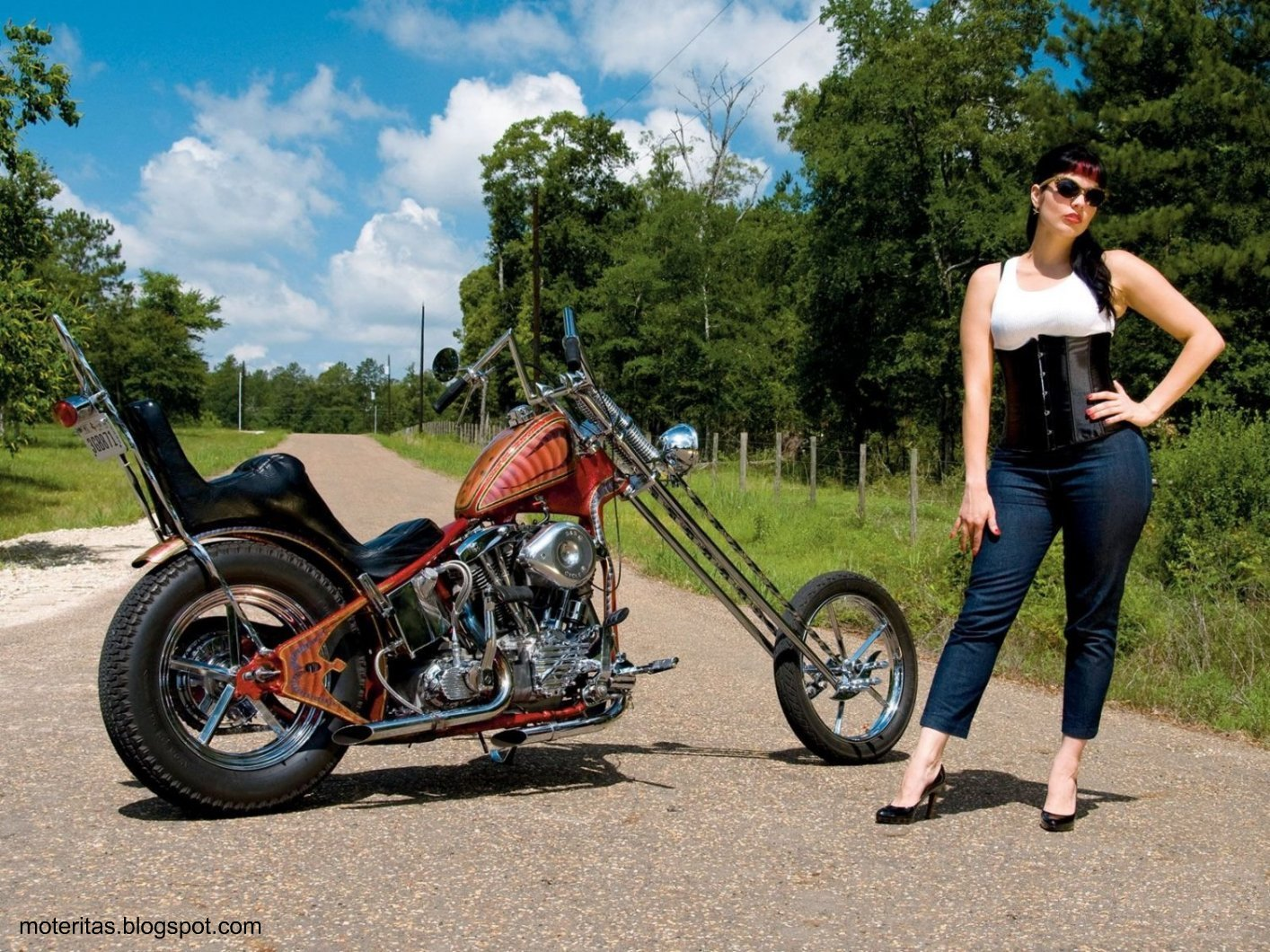 2366 Sacoche Laterale Solo Cuir Jack Daniel S Bobbers Choppers Harley Custom 3662907010796 furthermore 3legged Enterprises also Product product id 1920 together with Watch in addition Hd Bobber Wallpaper. on harley davidson 45 bobber