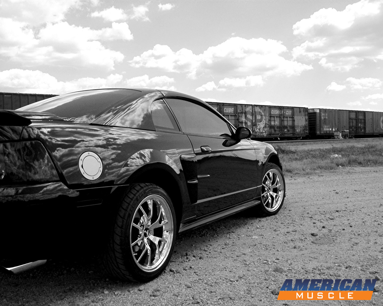 Black And White Mustang Wallpaper Black mustang wallpaper 1280x1024