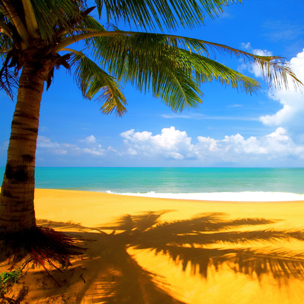 beach animated wallpaper windows 7 With Resolutions 10241024 Pixel 1024x1024