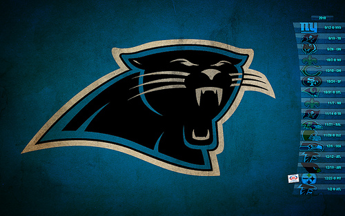2010 Carolina Panthers Schedule Wallpaper Explore Hawk Eye 500x313