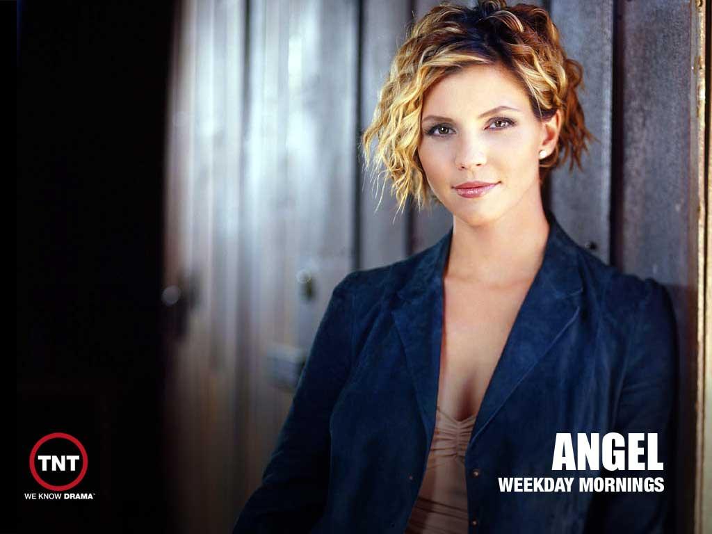 Angel TV Series Wallpaper 1 1024 1024x768