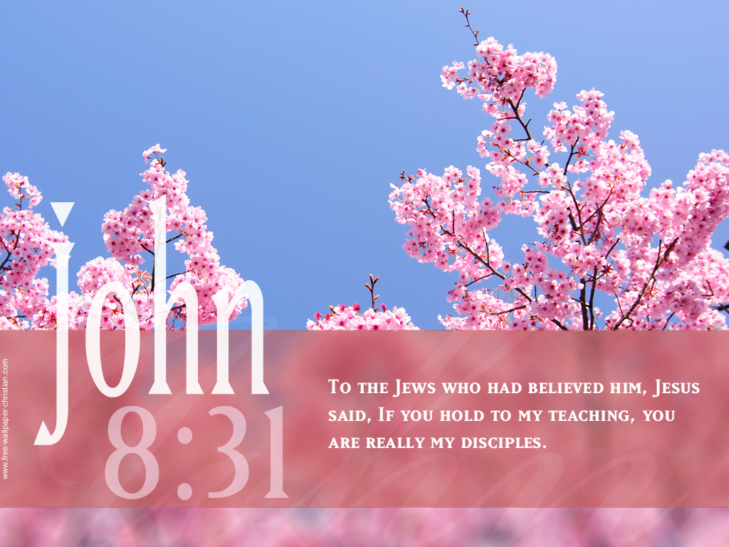 Free Christian Wallpapers: Bible Quotes with Background ...