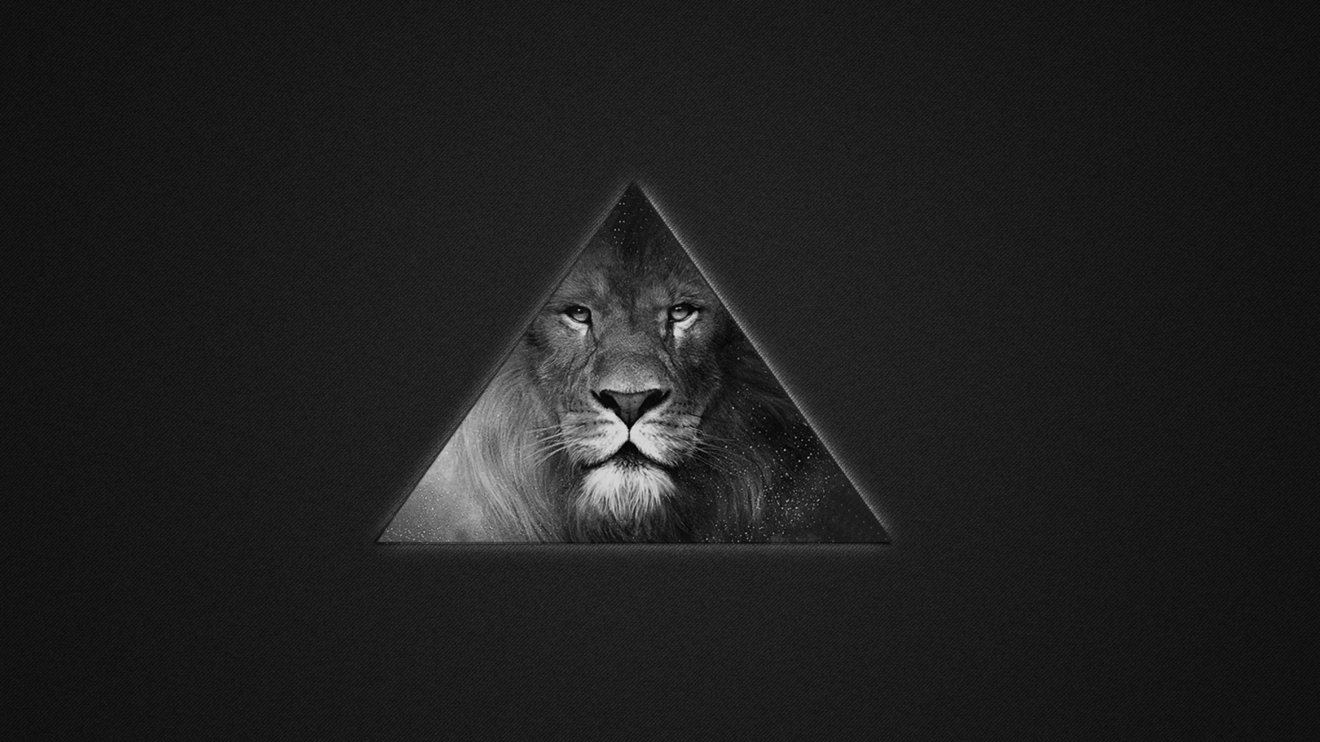 Lions Black And White Triangle Wallpaper For Desktop 1920x1080 Full