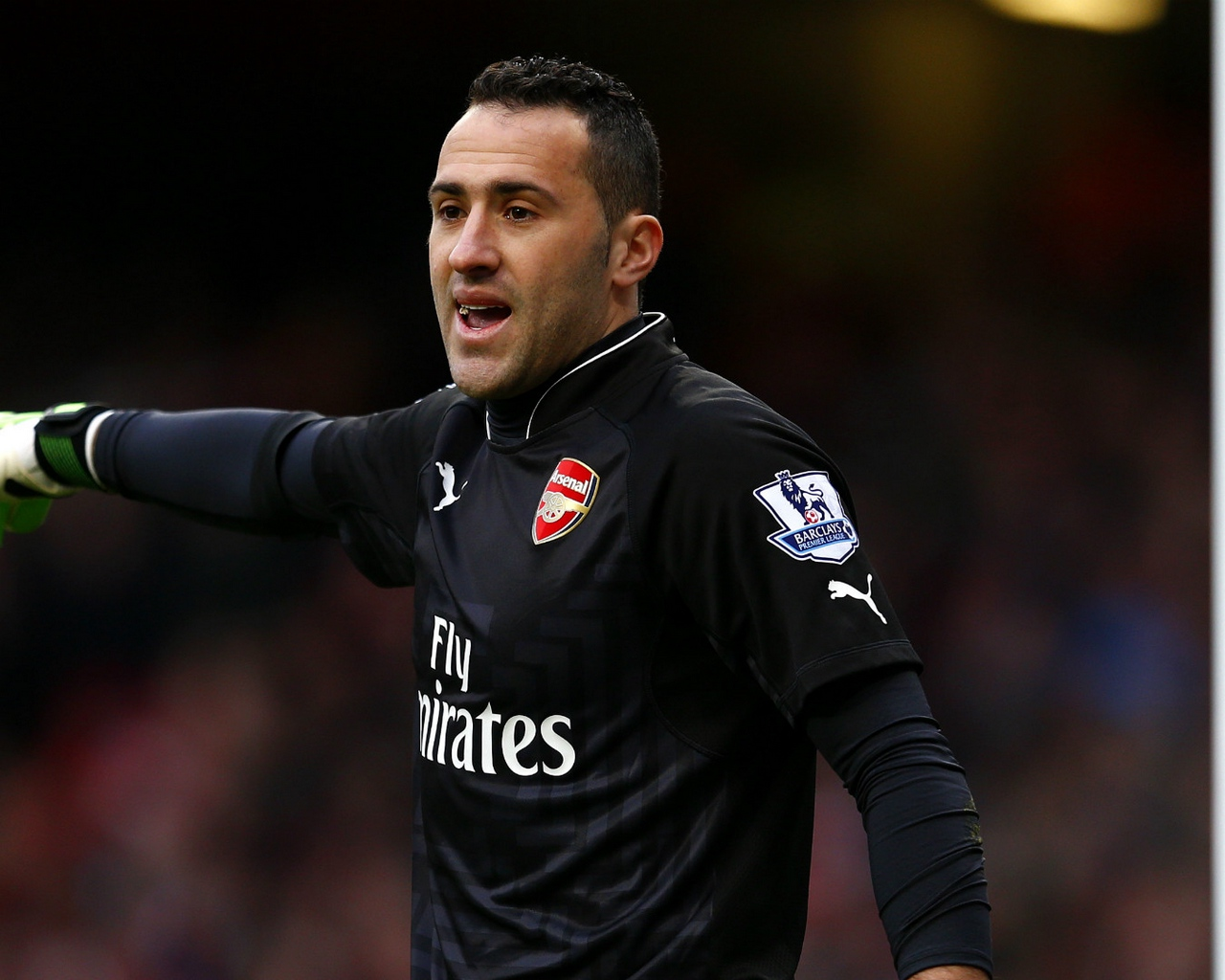 Download wallpaper 1280x1024 david ospina arsenal footballer 1280x1024