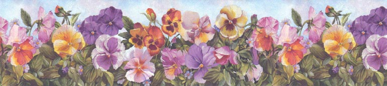 Details about FLOWERS COLOURFUL PANSIES Wallpaper Border 225B28973 770x172