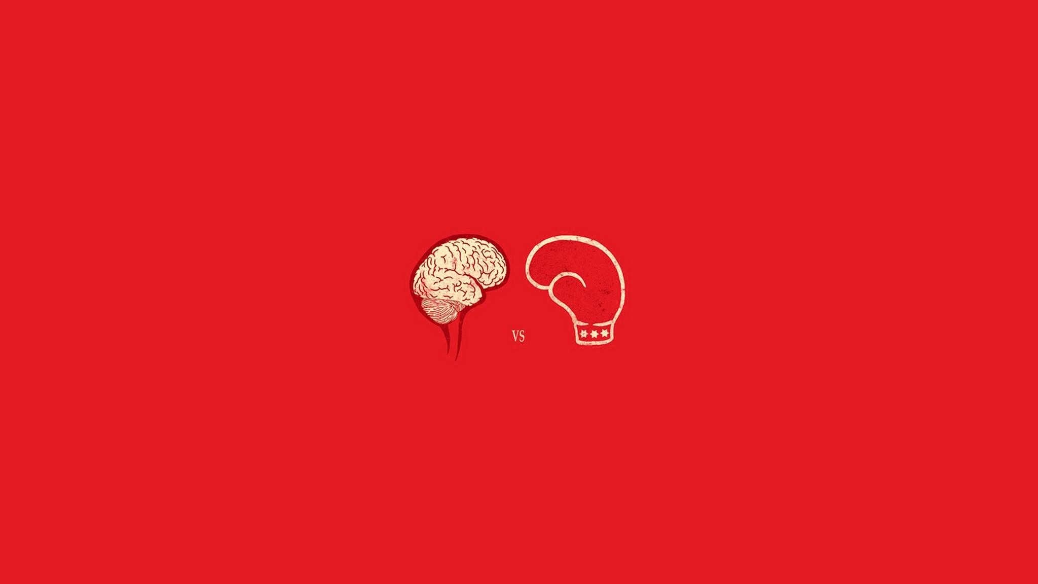 Download wallpaper 2048x1152 glove mind boxing brain strength 2048x1152