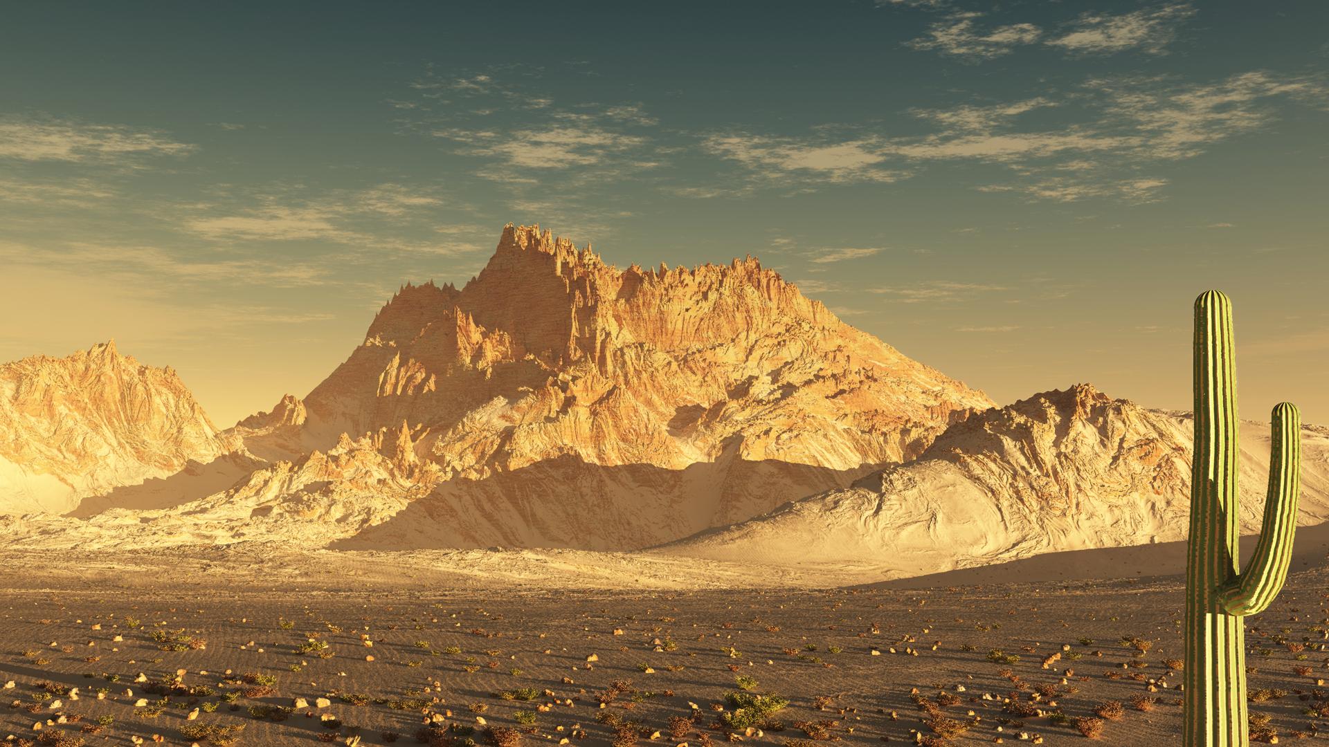Sonoran Desert HD Pictures 1920x1080