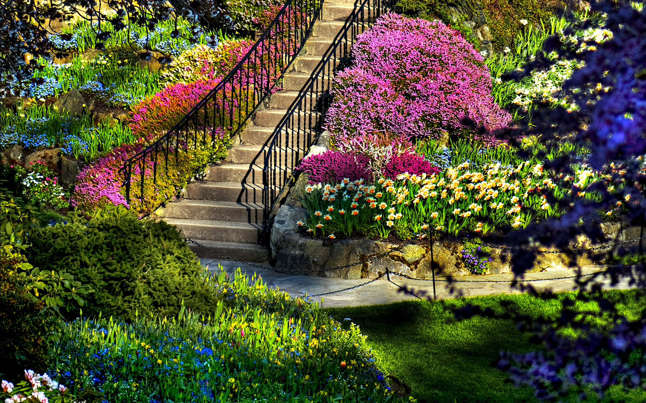 Dream Spring 2012   beautiful garden Wallpapers   HD Wallpapers 96626 2560x1600