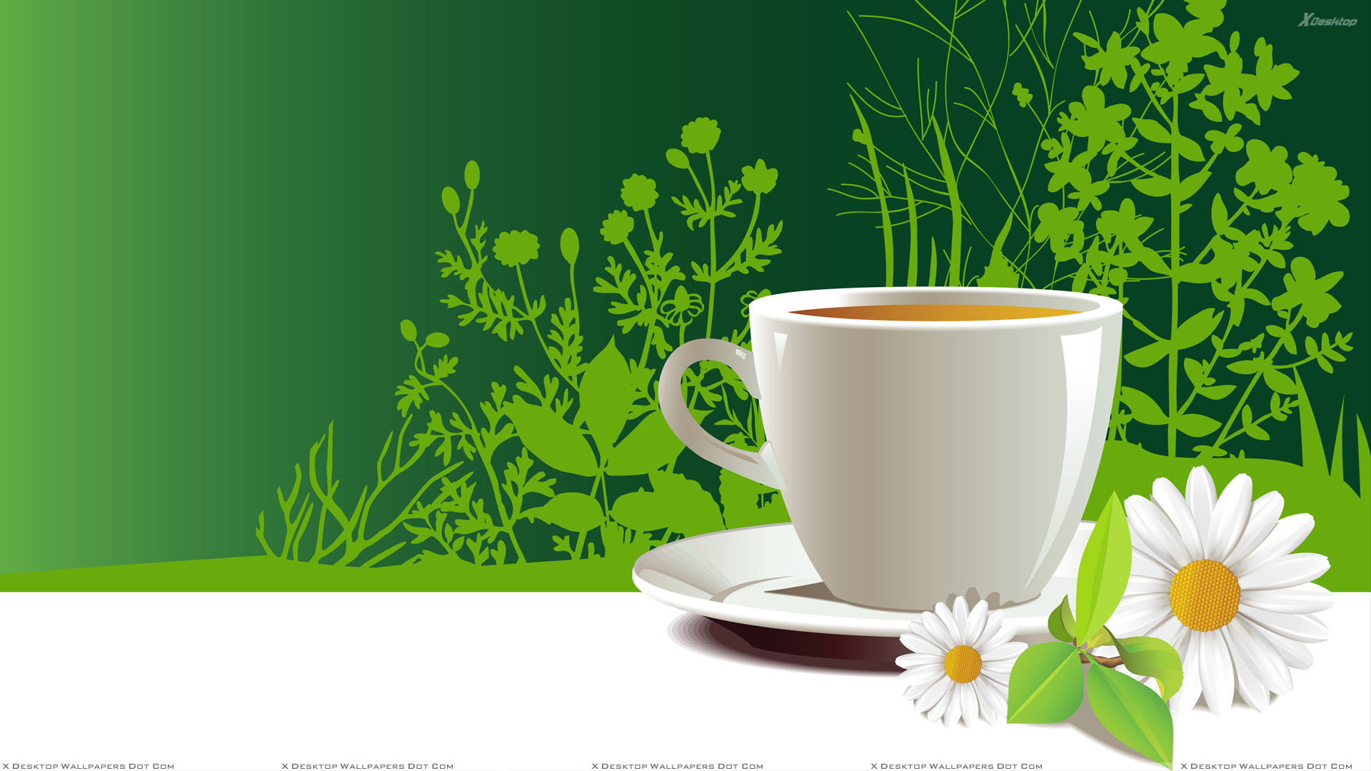 White Artistic Cup Of Tea in Plate with Flower 1920x1080