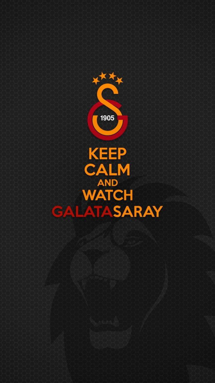 footballers Galatasaray SK Soccer Wallpapers HD Desktop and 748x1330