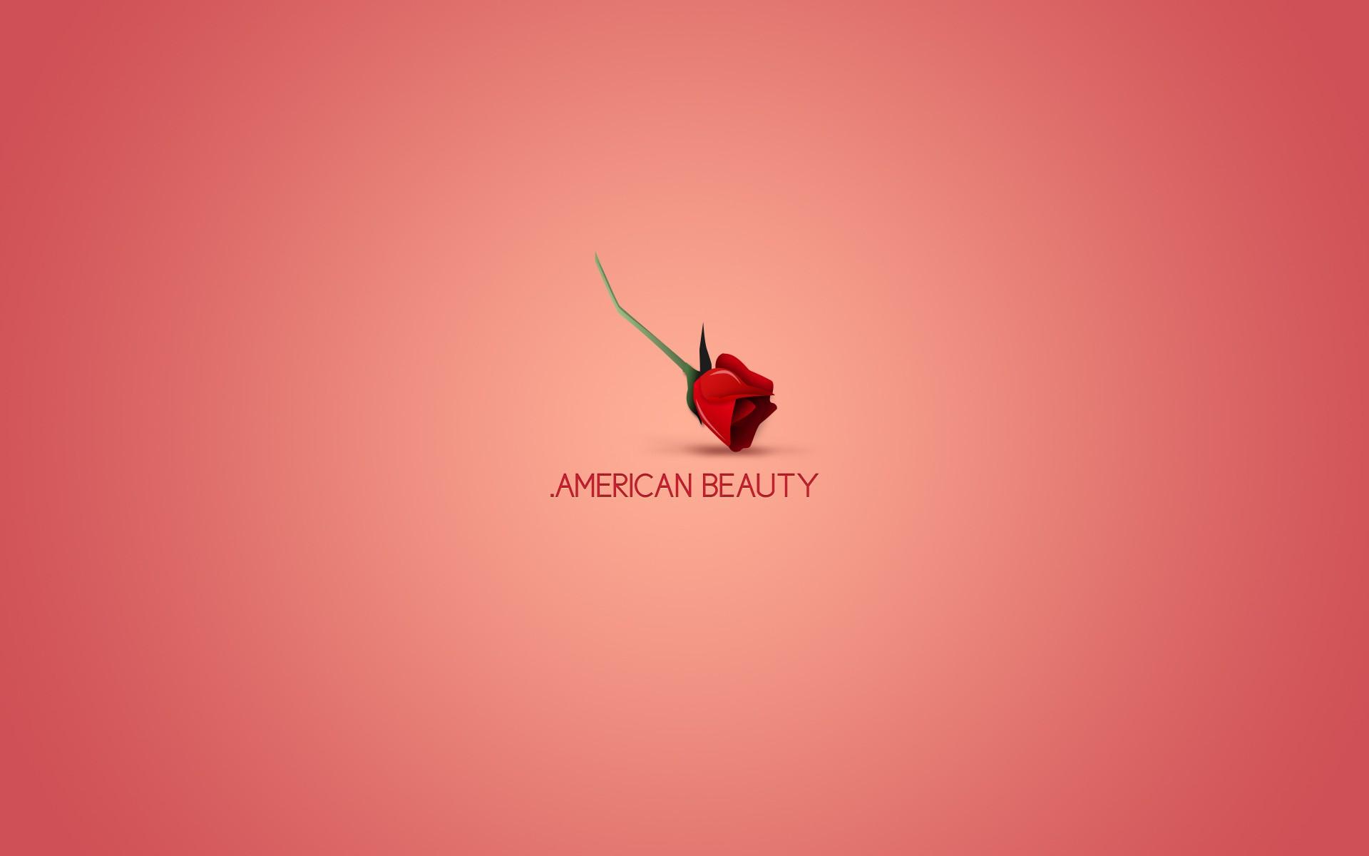 American Beauty Wallpapers HD C787283   4USkY 1920x1200
