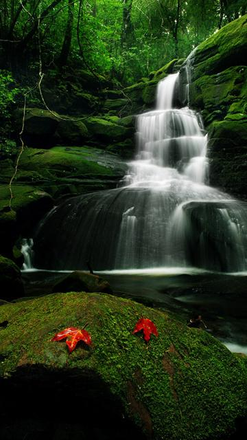 nature wallpapers for mobile phones Desktop Backgrounds 360x640