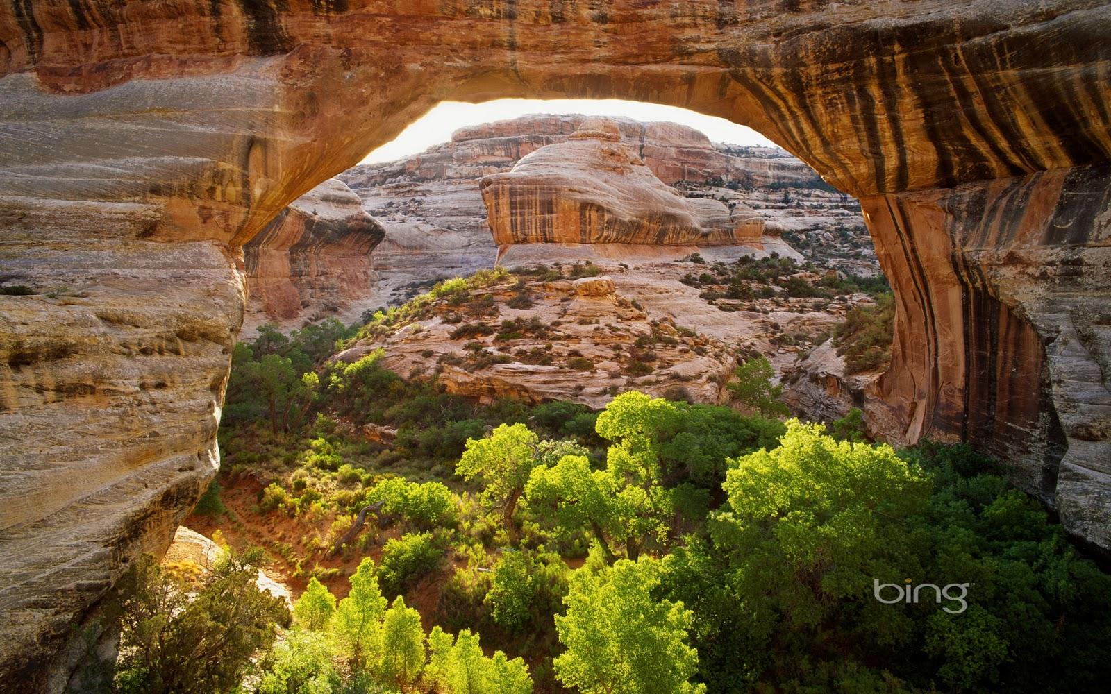 Sipapu Bridge in Natural Bridges National Monument, Utah (© George H ...